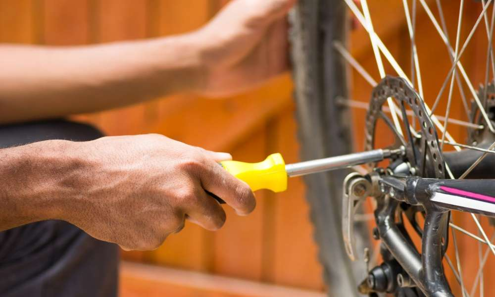 Replacing and Greasing the Bike's Wheel Bearings